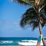 Kauai Beachfront Vacation Rentals