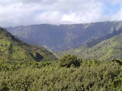 Kauai_Vacation_Rentals_Image_Haena_Nohonani3