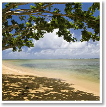Anini Beach Vacation Rentals