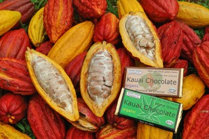 Kauai Chocolate Farm Tours