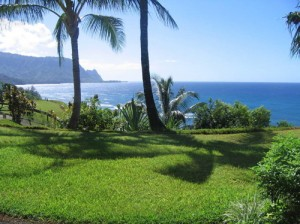 Princeville condo for rent