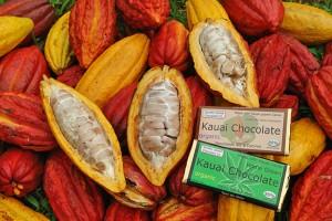 Kauai Chocolate Farm Tours