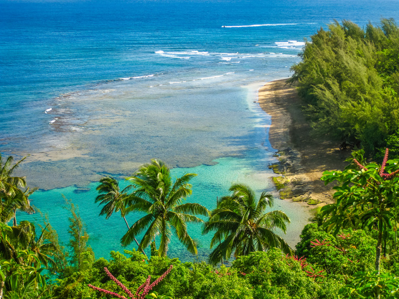 Kauai's North Shore